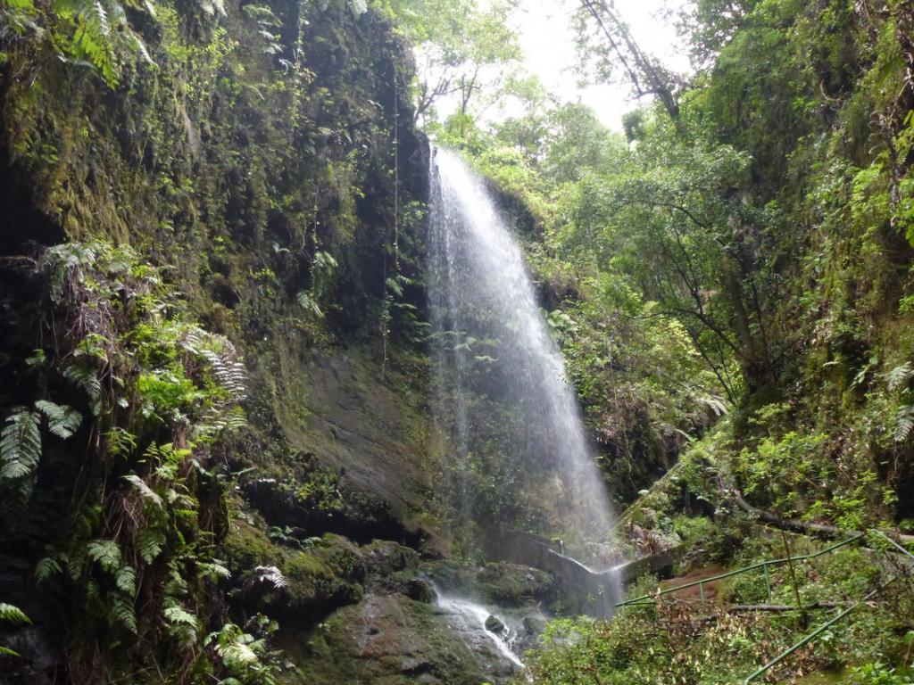 Cascada De los Tilos, San Andrés y Sauces. La Palma